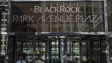 BlackRock's green credentials have long been questioned.
