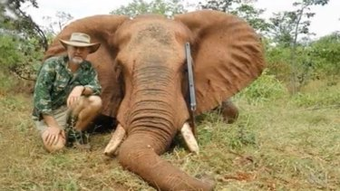 Shooter, Fishers and Farmers Party leader Robert Borsak with a dead elephant.