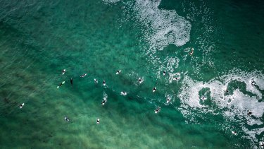 Surfers  at Maroubra.