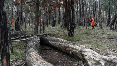 The site where Karen's body was found.