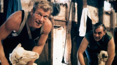 Foley (Jack Thompson) and Tom West (Rob Bruning) at work shearing in Sunday Too Far Away.