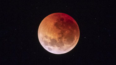 The blood moon seen from the National Arboretum.