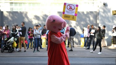 An Amnesty International supporter dressed as the children's television show character Peppa Pig protests outside the Chinese Consulate in Sydney earlier this month.