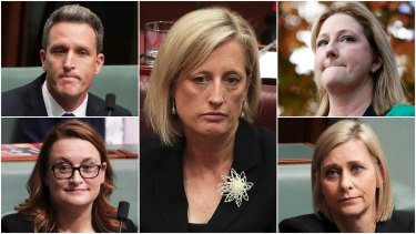 Labor MP Josh Wilson, Senator Katy Gallagher, crossbench MP Rebekha Sharkie, Labor MP Susan Lamb and Labor MP Justine Keay, have been caught by section 44.