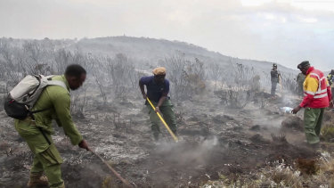 Rangers and volunteers help to put out fires on Mount Kilimanjaro in Tanzania.