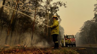 Northern Territory Fire and Rescue firefighter Luke Ezzy contains a blaze beside the Princes Highway near Nowra during the Black Summer bushfires.