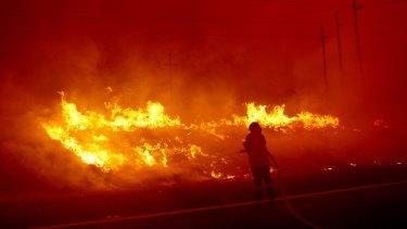 Last summer's fires made it a season of dread.