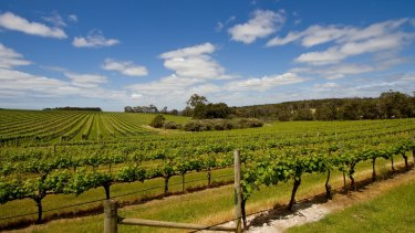 The Shire of Augusta-Margaret River has urged backpackers and holiday home owners to go to Perth.