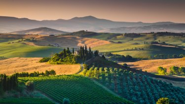 The rolling hills and valleys of scenic Tuscany in golden morning light.