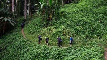 Trekkers on the Kokoda track.