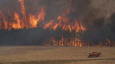 A fire in the Alpine region last summer, when bushfires ravaged the east of the state.