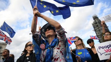 Remain supporters ramped up their protests at Westminster this week.