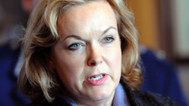 """We lost 50 people"": Former police minister and New Zealand National Party MP Judith Collins."