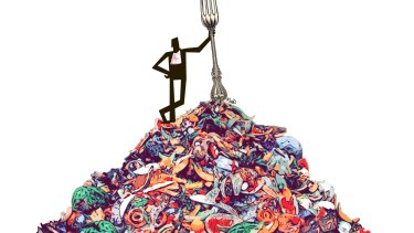 Waste not, want not. Illustration: Matt Davidson