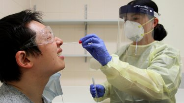 Efforts to stem the spread of COVID-19 has effectively wiped out the common flu in Australia.