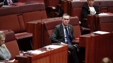 Independent senator Tim Storer during question time in the Senate.