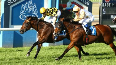 It's a seven-race card in the horse capital of Australia on Monday.