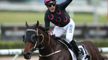 Pick me: The Monstar is hoping for a slot in The Kosciuszko via The Shorts on Saturday.