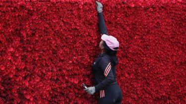 A woman places roses on the  replica Cochasqui pyramid temple.