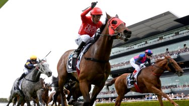 Winning team: James Harron and Redzel teamed up to win the inaugural Everest.