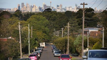 Some parts of Sydney have high tree cover, such as the north shore and north-west.