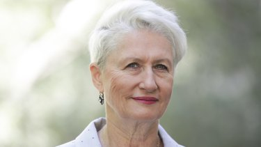 Wentworth MP Kerryn Phelps says she has been the target of a malicious email campaign.
