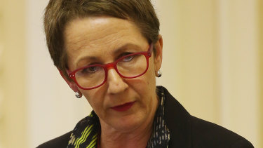 Child Safety Minister Di Farmer has brought more funding to help domestic and family violence services to handle the influx of calls for help during the pandemic.