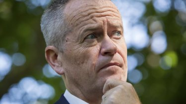 Labor leader Bill Shorten has not ruled out using Kyoto credits.