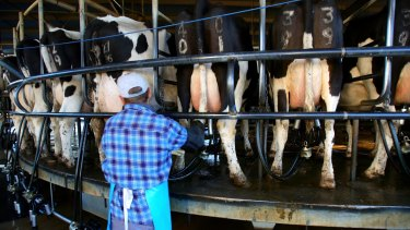 Dairy farmers will be told what they will be paid over the life of their contracts under the new code.