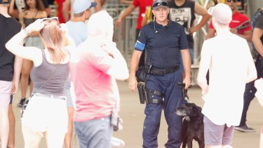 Police use sniffer dogs to search patrons before entry into music festivals more often now than a decade ago.