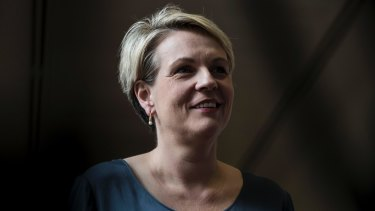 Labor's spokesperson for women, Tanya Plibersek, will release a national strategy for women's reproductive health on Wednesday.