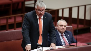 Centre Alliance senators Rex Patrick and Stirling Griff during Question Time in the Senate last year.