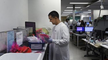 A medical professional collects coronavirus samples in the Central Specimen Reception to take them to virology.