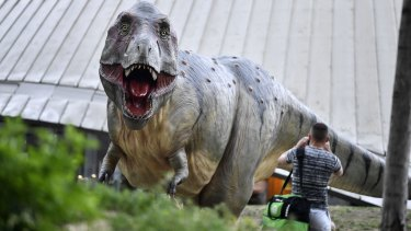 A man stands in front of a life-size replica of a Tyrannosaurus rex dinosaur in the city centre of Bochum, Germany.
