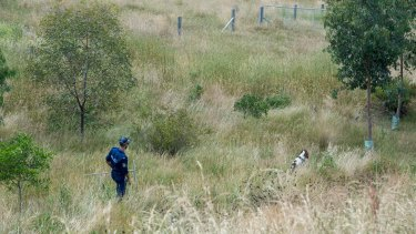 Police scour scrub and grassland near Toolern Vale, north-west of Melbourne.