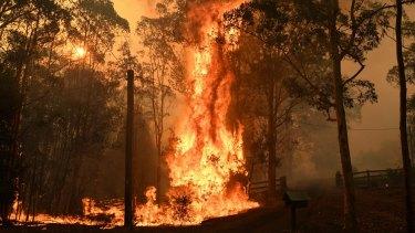 The Green Wattle fire in Orangeville, NSW on December 6.