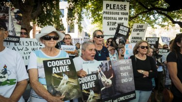 Protestors calling for the end of live exports earlier this year.