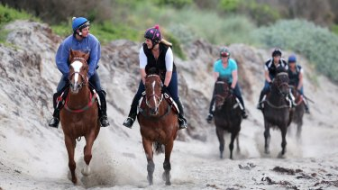 The dunes and beaches around Warrnambool have been used for decades to train horses, but local opponents say its use increased dramatically over recent years.