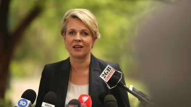 Tanya Plibersek addresses the media on Wednesday.