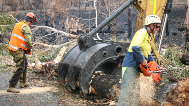 Army Reserve engineers work alongside local contractors to clear bushfire-damaged trees.
