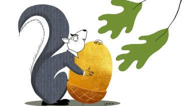 Squirrelling away retirement savings via a self-managed super fund is a big responsibility and takes a great deal of work. Illustration: Simon Letch