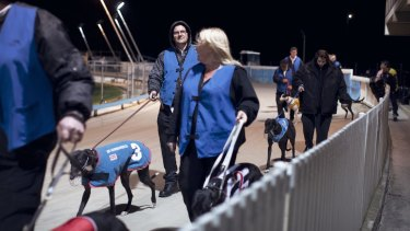 The future is uncertain for Dapto dogs.
