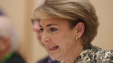 Small business minister Michaelia Cash said small businesses are concerned funding from banks has dried up.