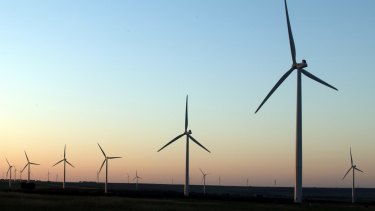 Australia's energy regulator is taking four SA wind farm operators to the Federal Court.