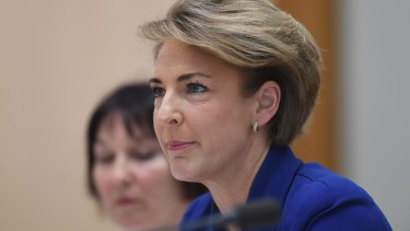 Michaelia Cash is calling on smaller operators to help decide how the payments reporting scheme will operate.