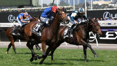 Moment to cherish: Kerrin McEvoy and Cross Counter win the Melbourne Cup ahead of Marmelo.