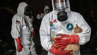 An Indonesian volunteer wearing personal protective equipment (PPE) carries his cat as he prepares for the burial process of bodies suspected being infected COVID-19.