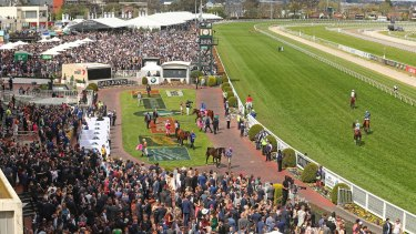 The Melbourne Racing Club has almost resigned itself to running this year's Caulfield Cup carnival without crowds.