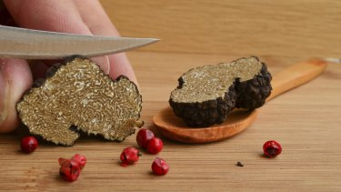 Black truffles are rare and expensive, and getting even more so.