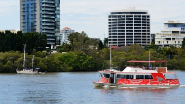All City Hopper and Cross River ferries services will be suspended from midnight Friday, with the council looking to bring them back 'as soon as possible'.